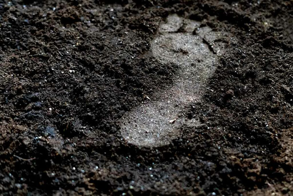 Boden - Haut der Erde