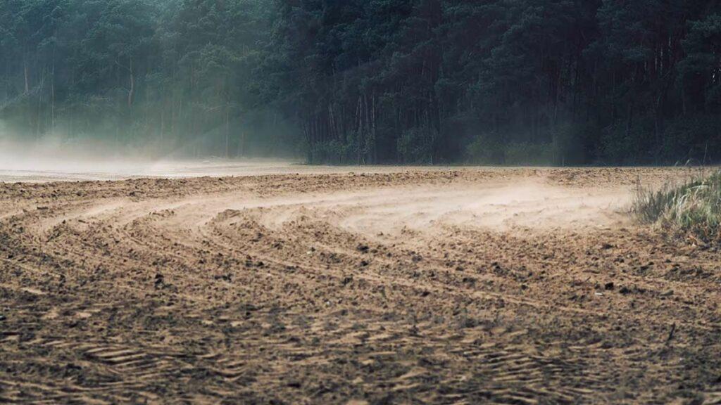 Bodenschutz Winderosion